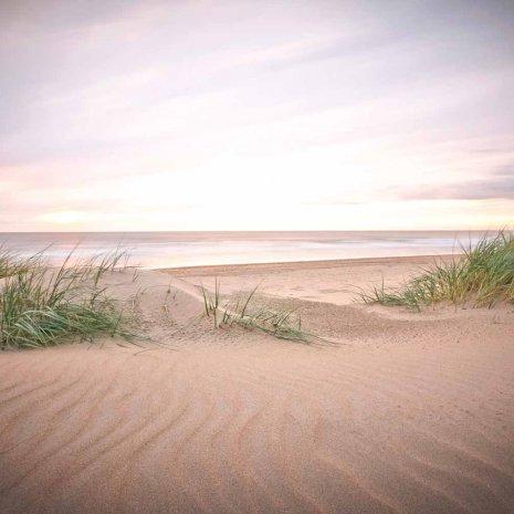Strandleven 14