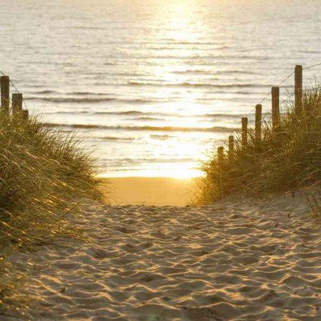 Strandleven 15