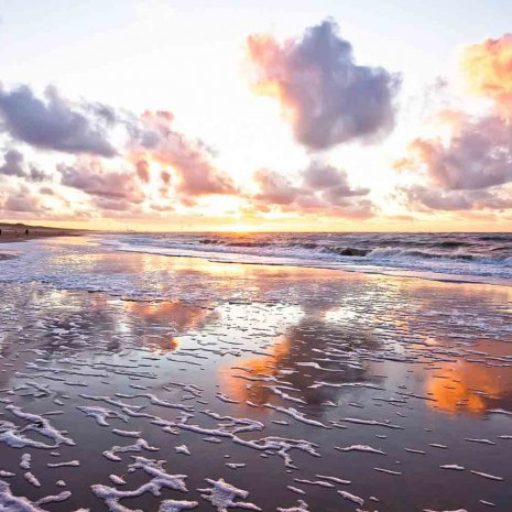 Strandleven-zee