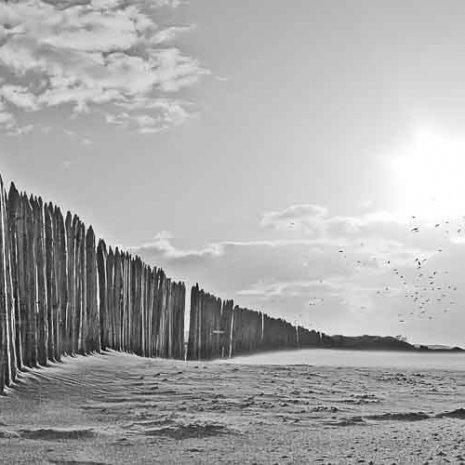 Strandleven Panorama 5